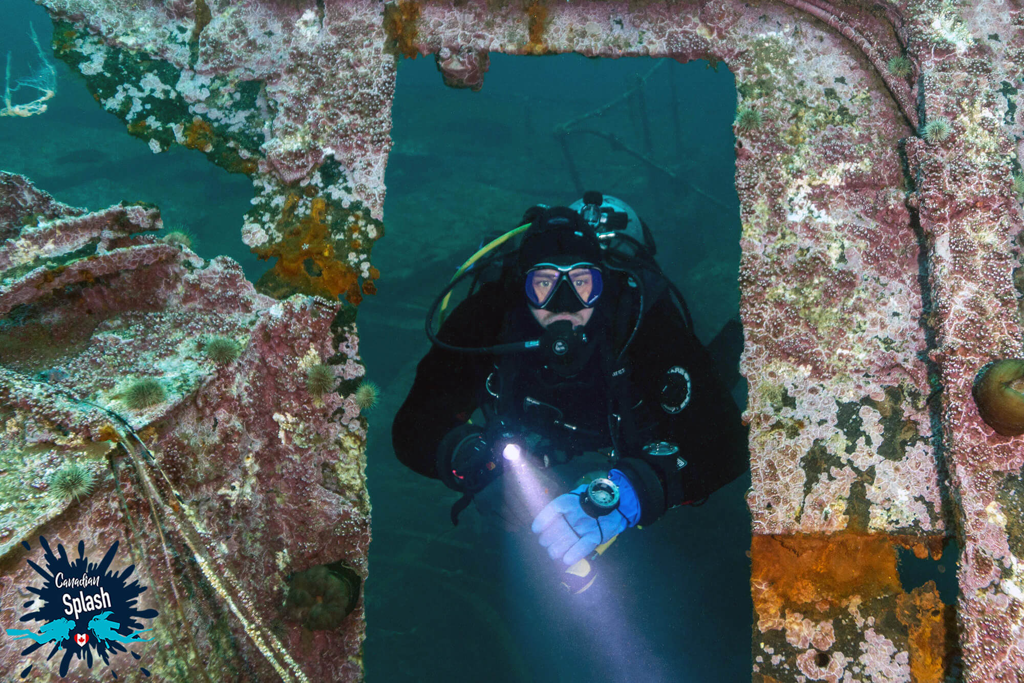 Scuba Joey Peeking Through A Door Frame While Scuba Diving The Bell Island Shipwrecks In Newfoundland, Canada