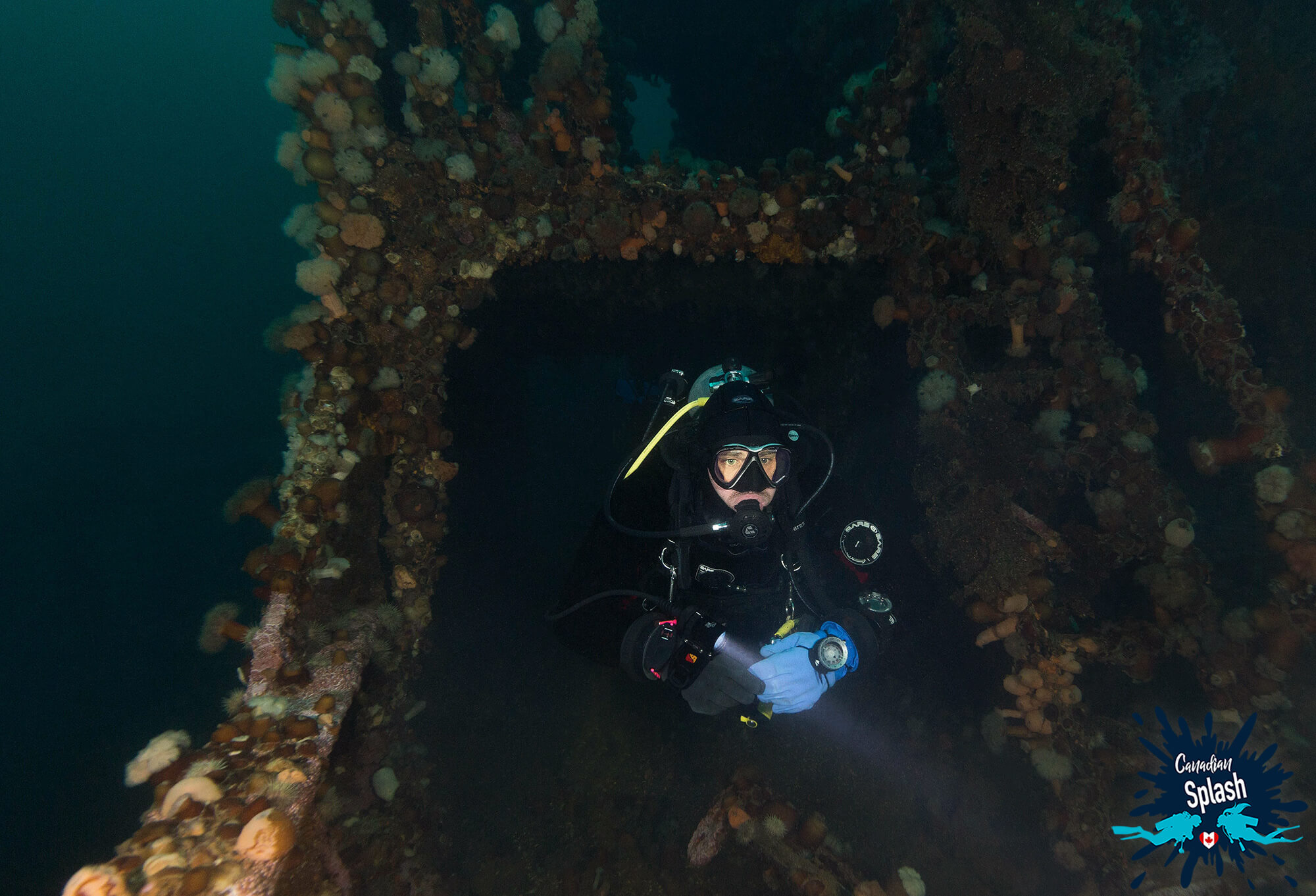 Scuba Joey Swimming Through The Walkway Of The Lord Strathcona Shipwreck In Bell Island, Newfoundland, Scuba Diving Canada