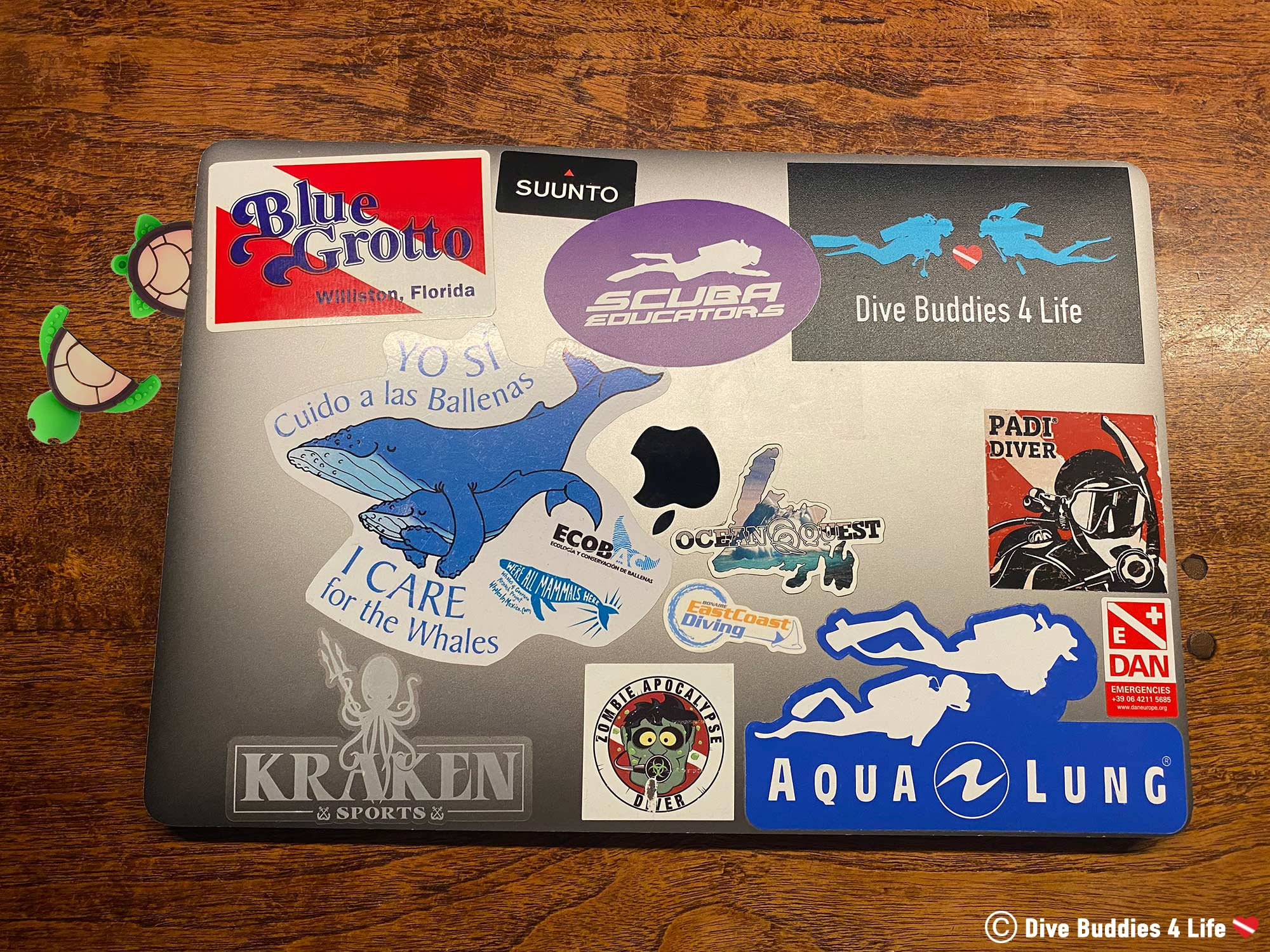 Sea Turtle USB In A Computer With Scuba Diving Stickers