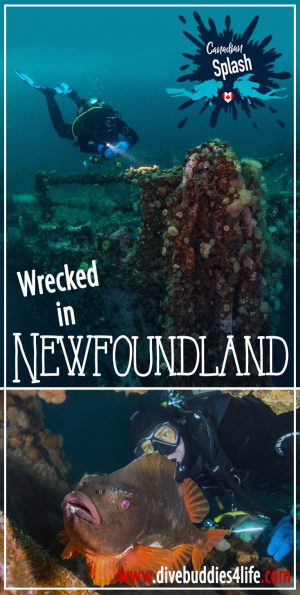 Shipwrecked In Newfoundland, Bell Island, Canadian Splash
