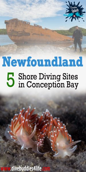 Shore Diving In Newfoundland, Canadian Splash Adventures