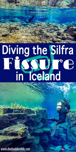 Silfra Diving Pinterest