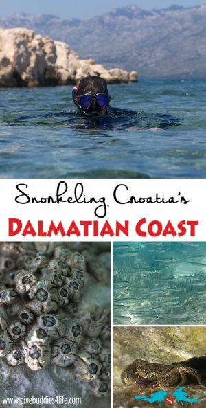 Snorkeling The Dalmatian Coast Of Croatia
