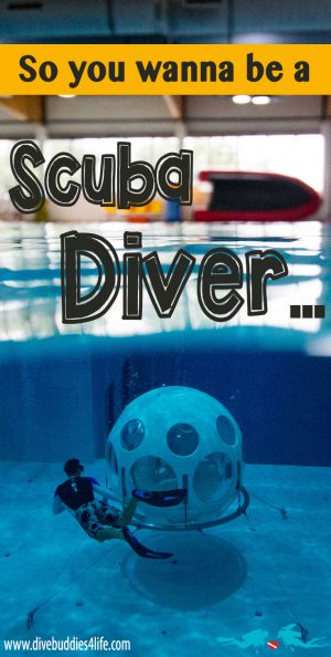 So You Wanna Be A Scuba Diver Pinterest