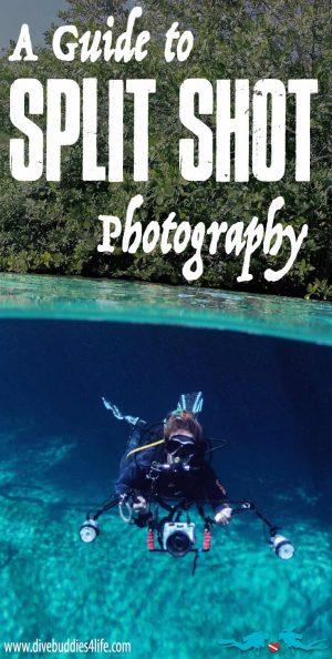 Split Shot Photography Guide Pinterest