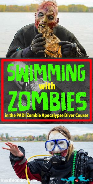 Swimming With Zombies Pinterest