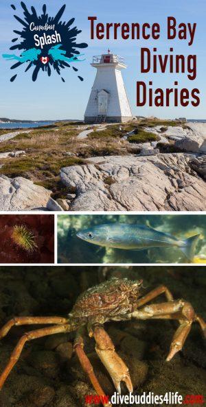 Terrence Bay Diving Diaries, Nova Scotia Pinterest