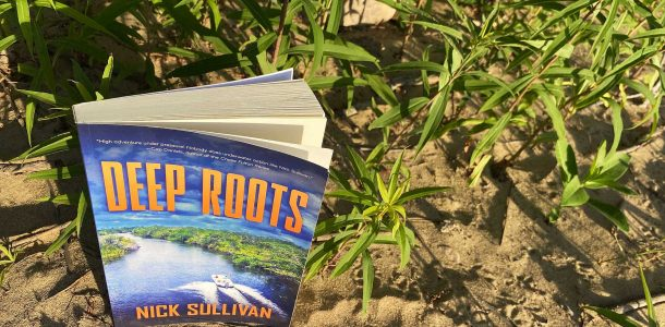 The Beach And The Green Plants With The Deep Roots Belize Diving Novel By Nick Sullivan
