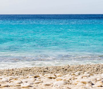 The Blue Ocean Of Bonaire Just Waiting To Be Dove, Caribbean
