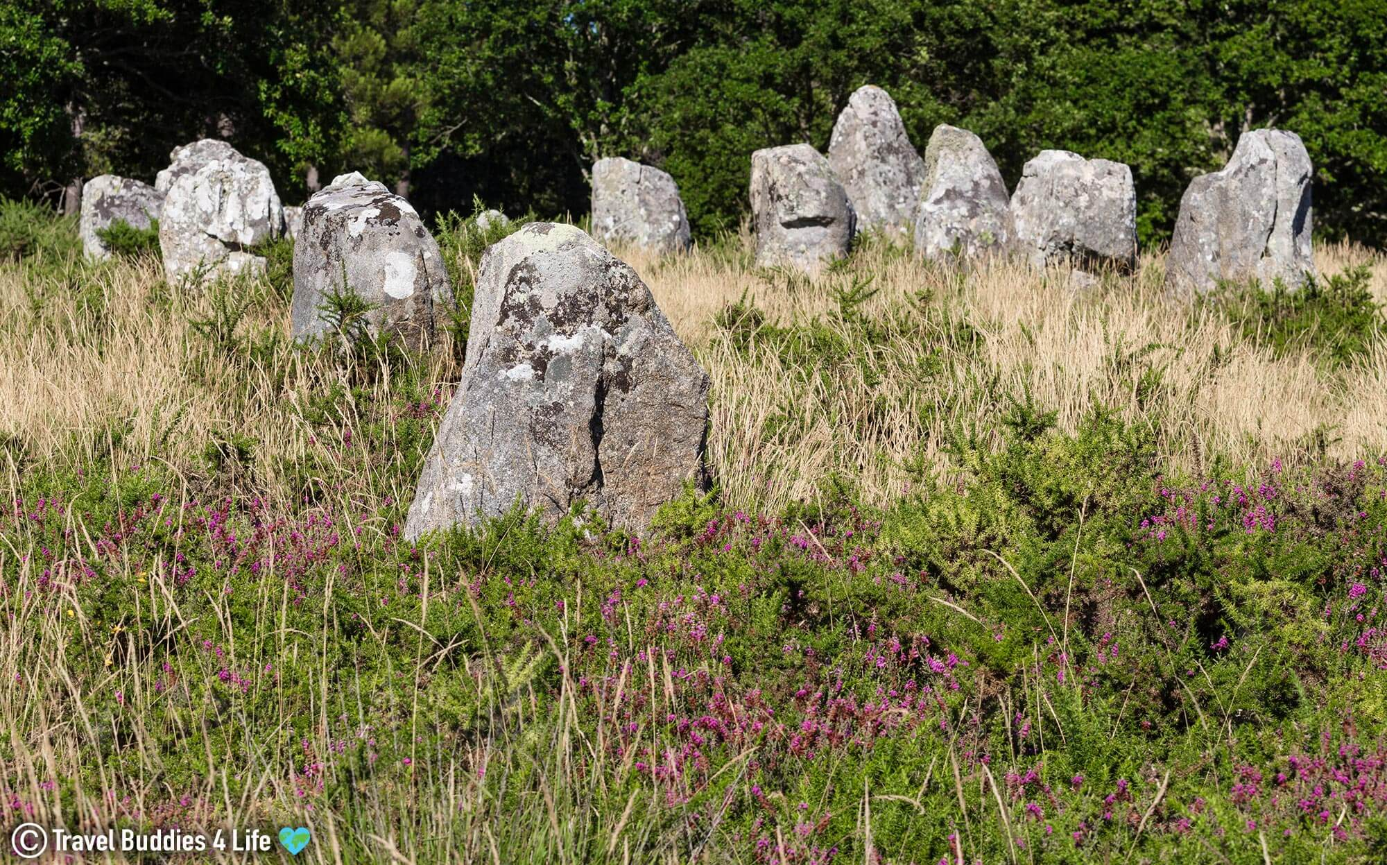 The Carnac Stones In The Small Touristic Town Of Brittany, France, Europe