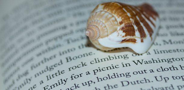 The Deep Shadow Scuba Novel Series Page With A Seashell