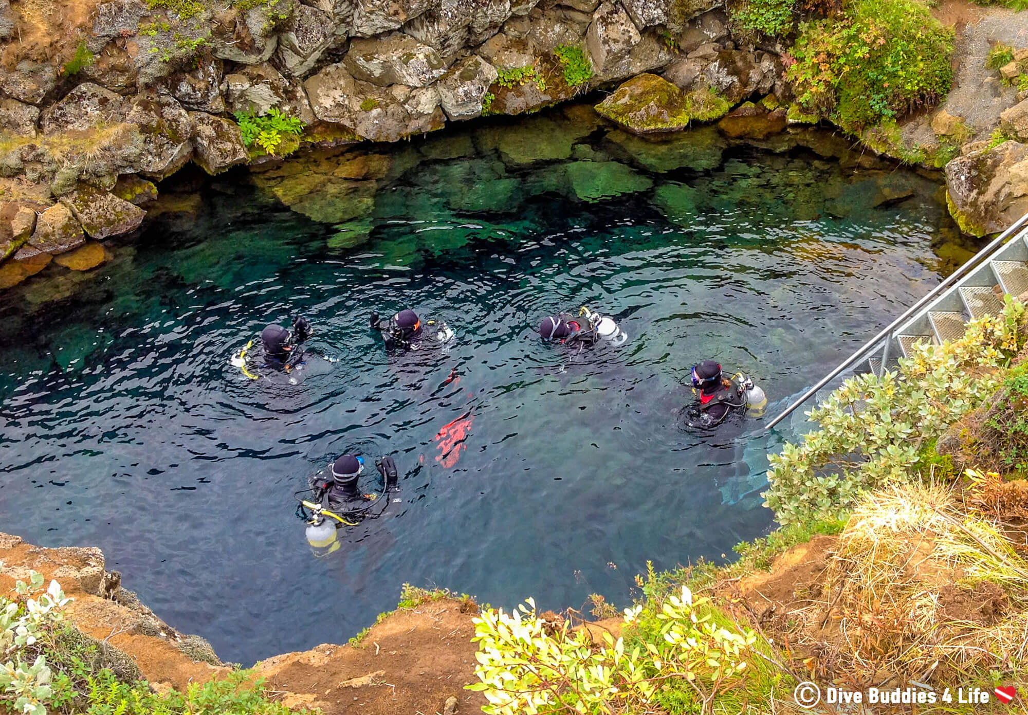 The Dive Group Submerging Themselves In The Clear Water Of The Silfra Crack