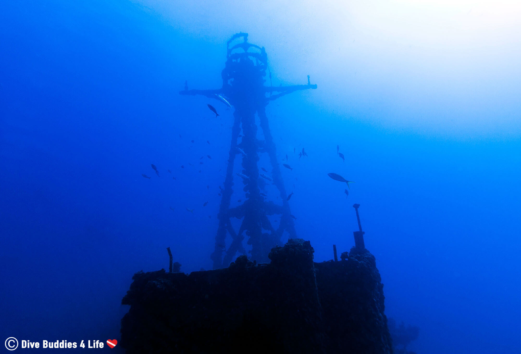 The Duanes Crows Nest On The Shipwreck In Key Largo, Florida Keys, USA Diving