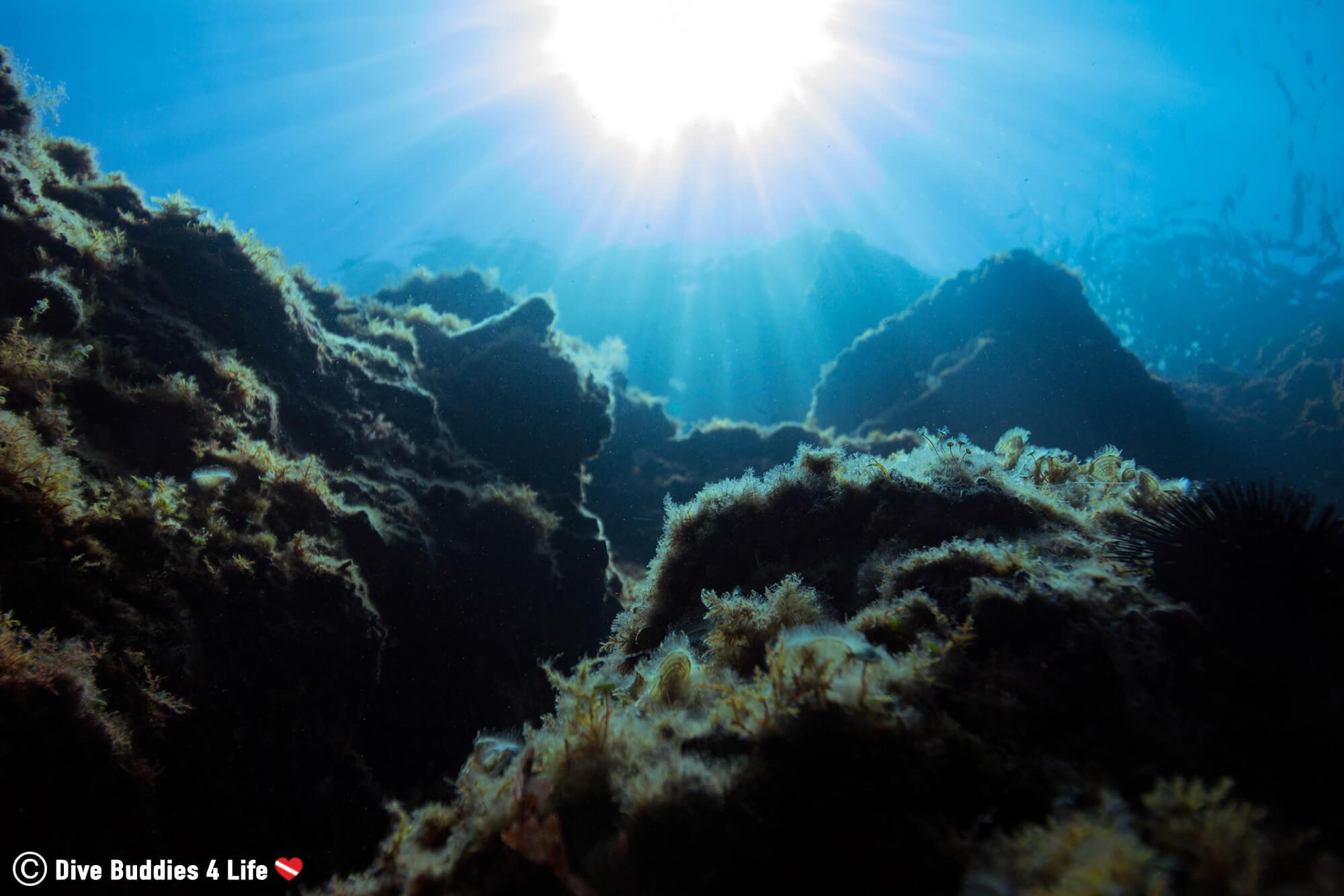 The Rocky Underwater Sea Escarpment Of Dubrovnik, Croatia, Europe