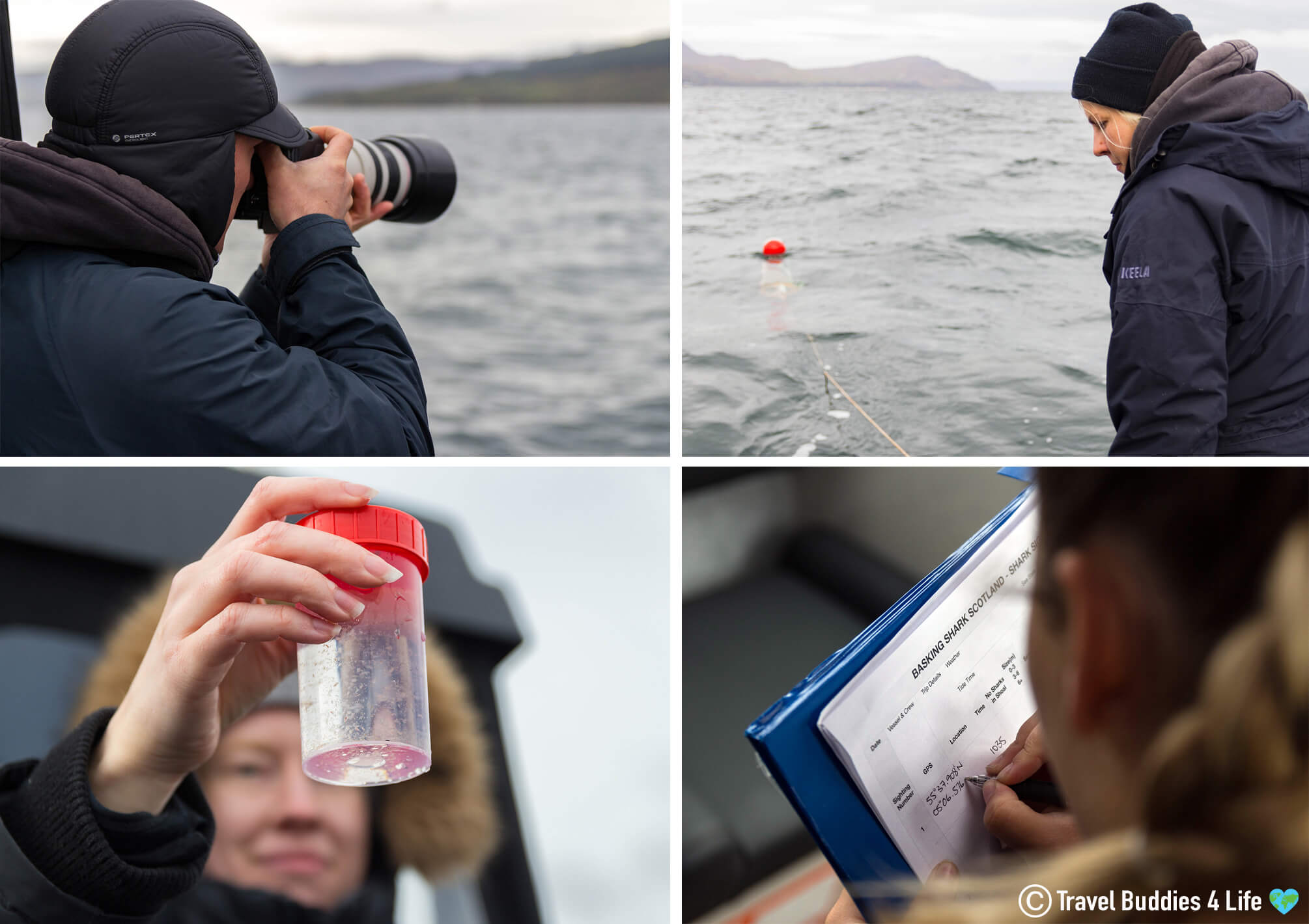 The Scientific Research Part Of The Basking Shark Scotland Research Expedition In The Firth Of Clyde, UK