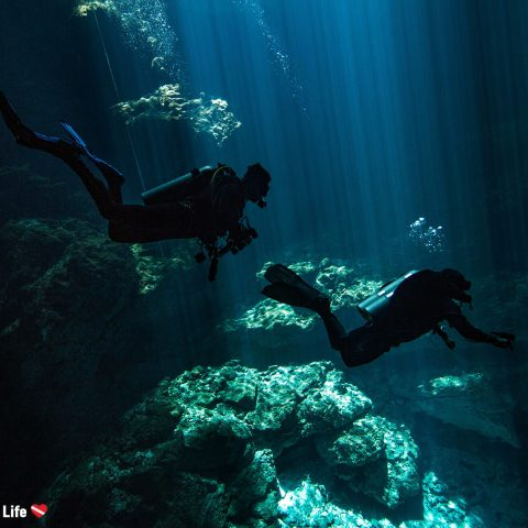 The Silhouette Of Two Scuba Divers Descending Into The Underwater Cenotes Called The Pit In Tulum, Mexico