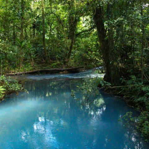 The Still Rio Celeste River in Tenorio Volcano National Park