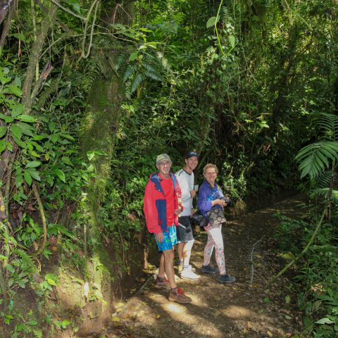 The Troops Hiking in the Jungle