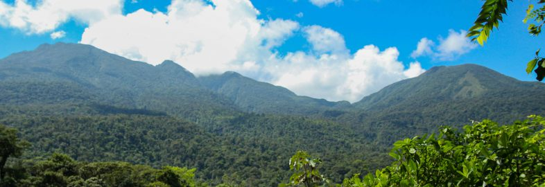 The Costa Rican Volcano Ridge