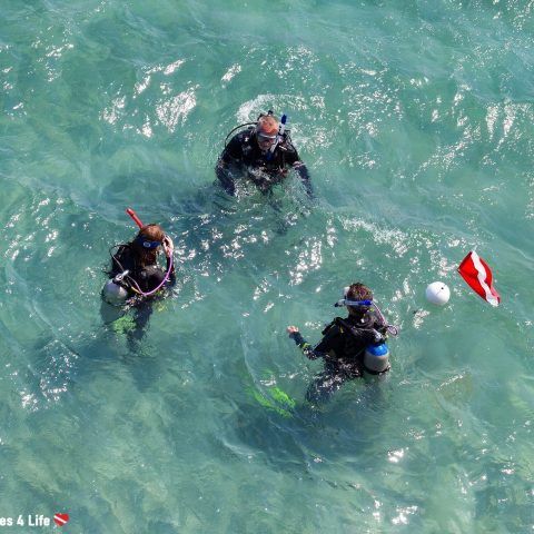 Three Divers Shot From Above Getting Ready To Dive Blue Heron Bridge In West Palm Beach