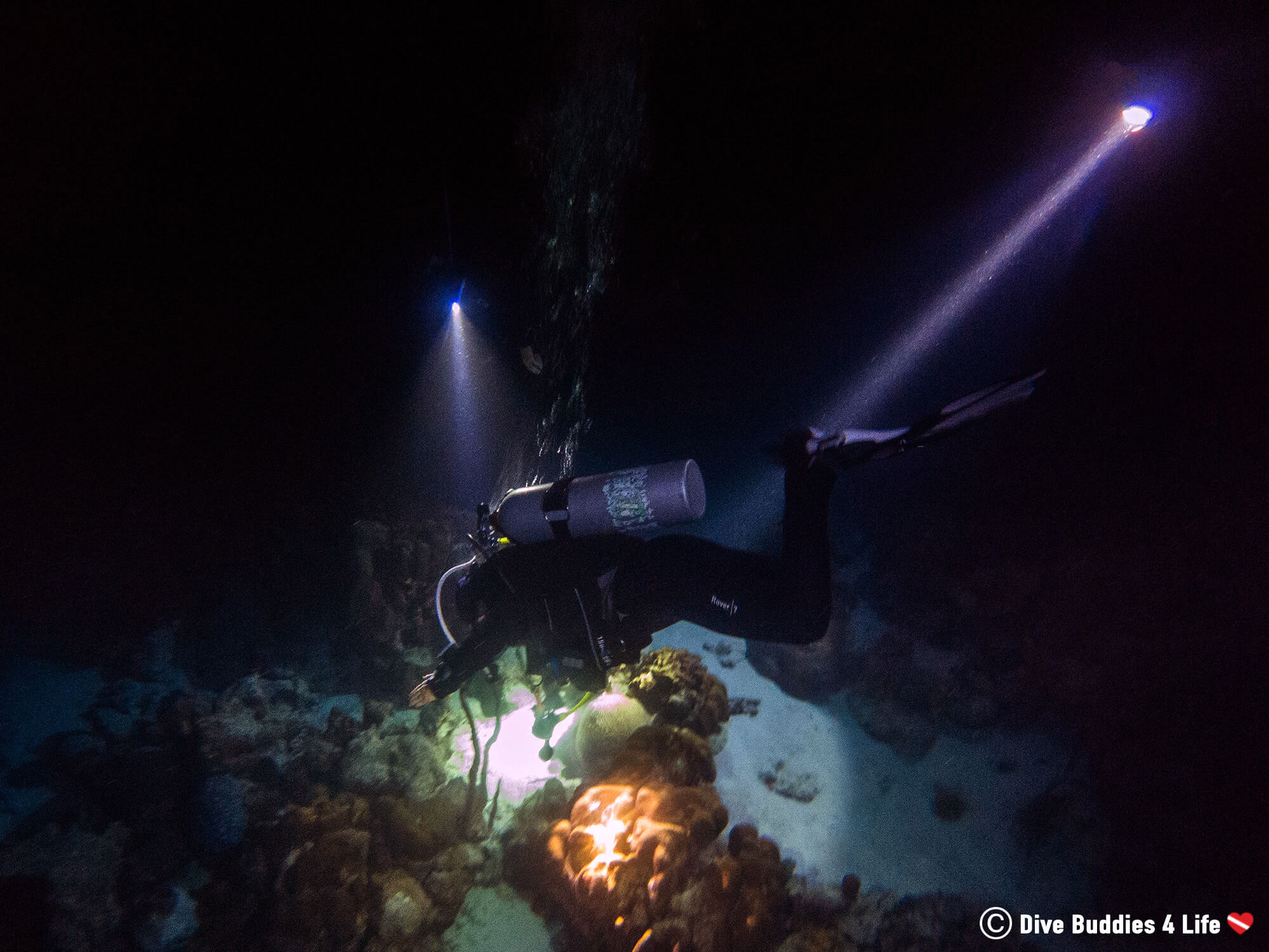 Three Scuba Divers On A Night Dive Lighting Up The Way With Their Dive Lights In Bonaire