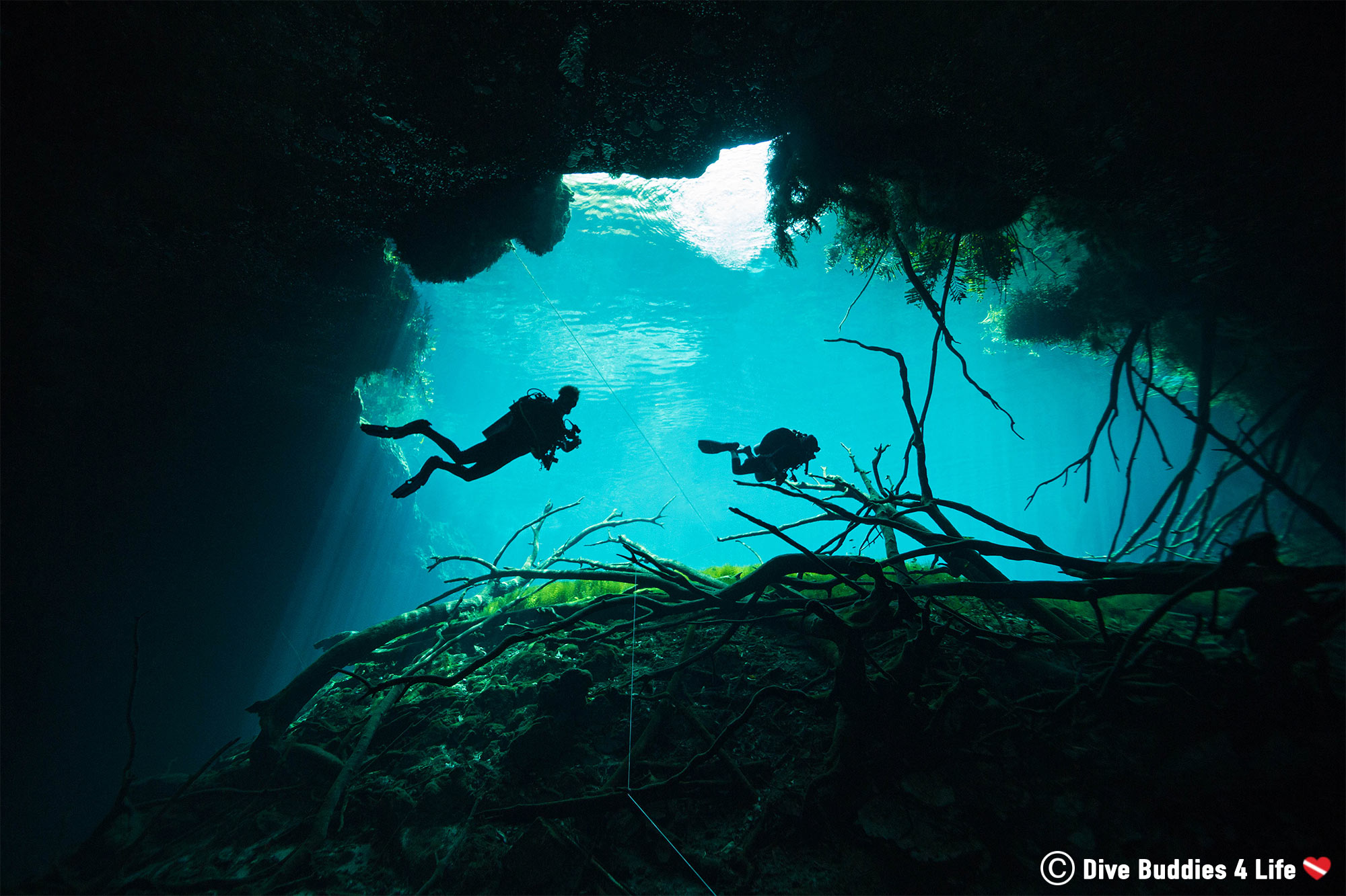 Two Scuba Divers Doing Their Safety Stop On The Line Of Carwash Cenote In Tulum, Mexico