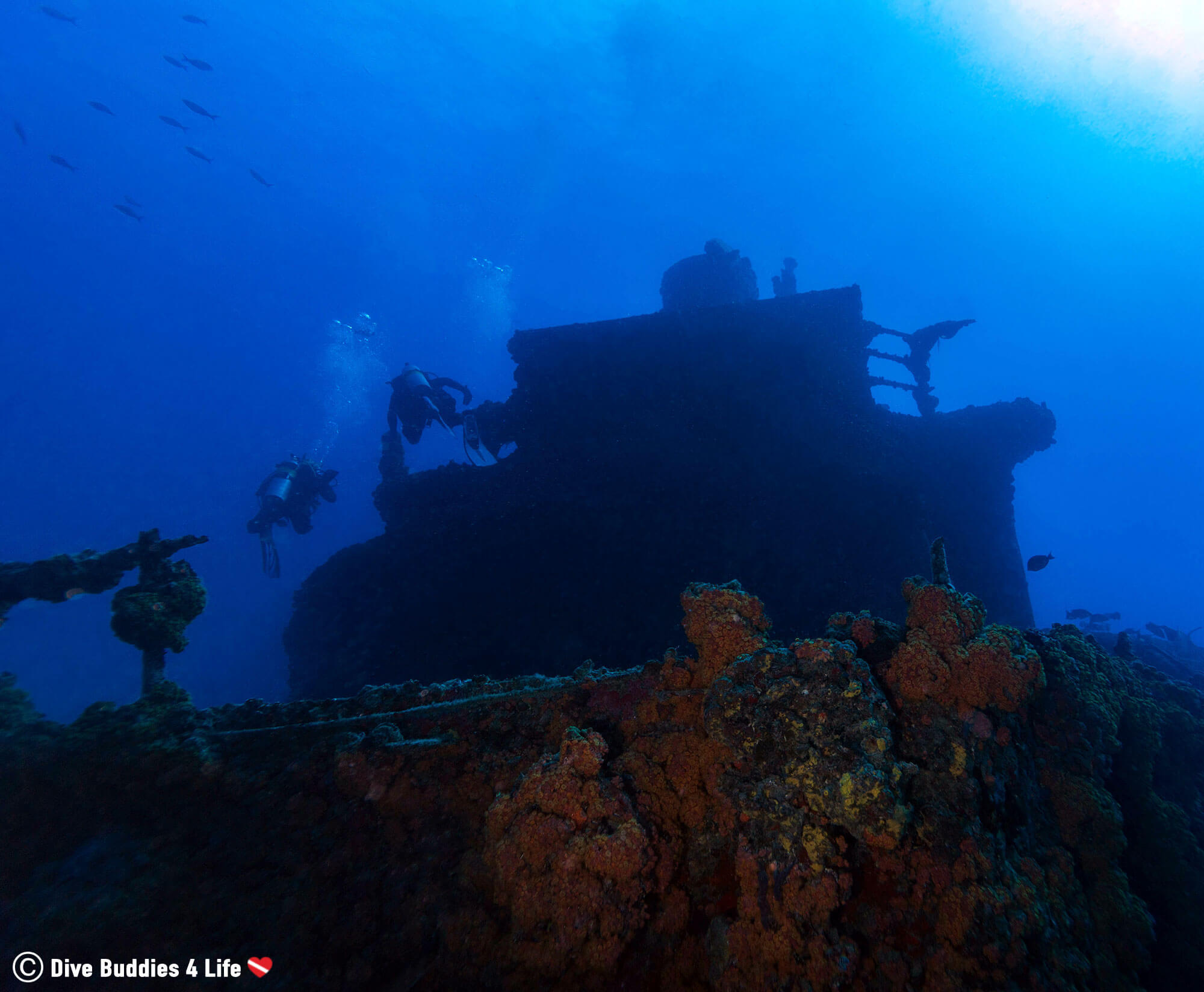 Two Scuba Divers Swimming Towards The Bow Of The Duane Shipwreck At The Bottom Of Key Largo, Florida Keys, USA