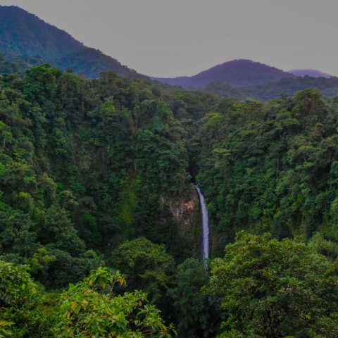 Enjoying the Outdoor View of the La Fortuna Waterfalls in the Jungle