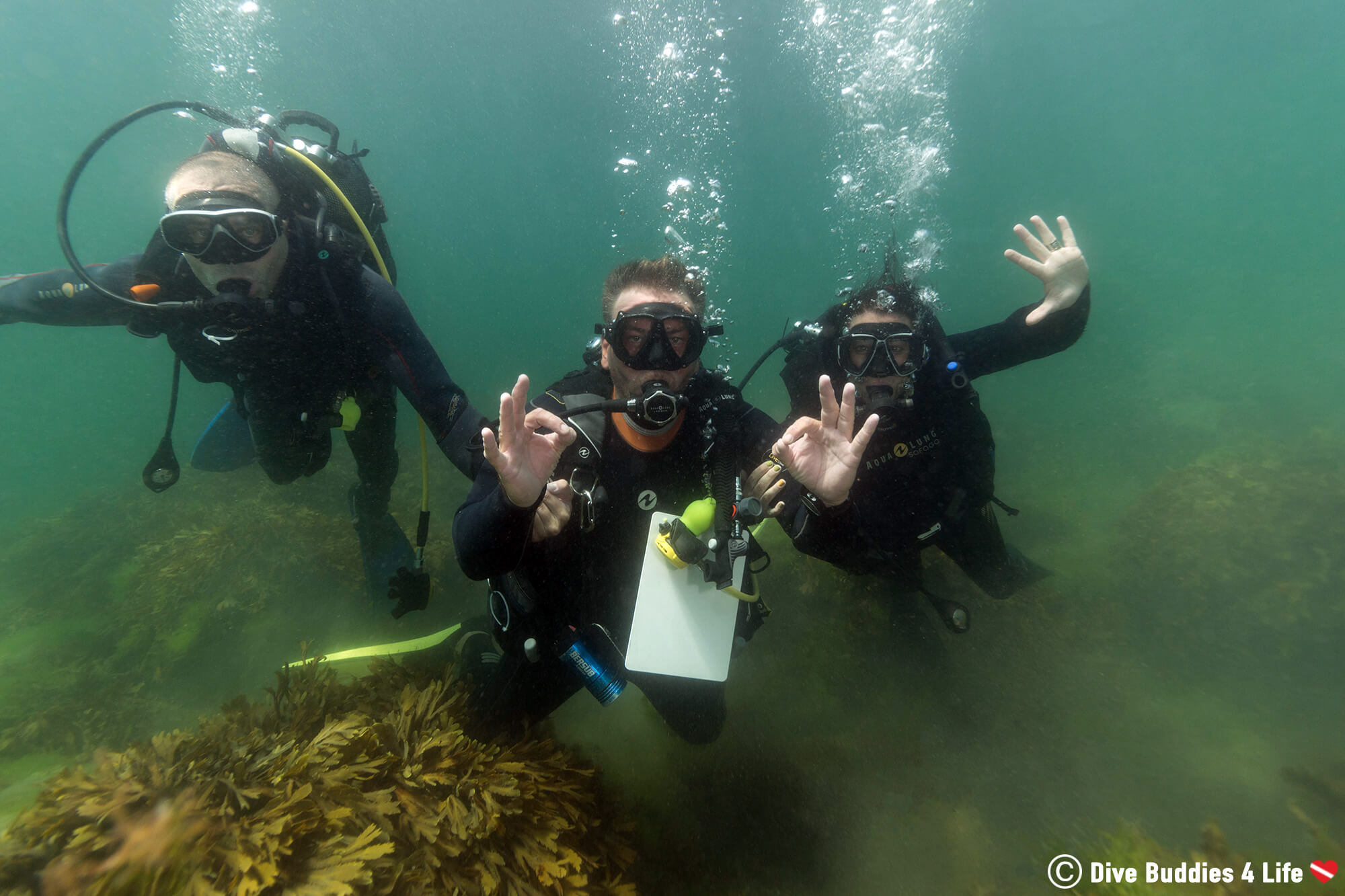 Carnac Underwater Scuba Diving Wedding Proposal in Brittany, France