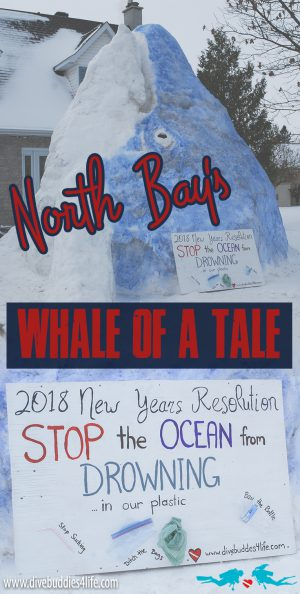 North Bay's Whale Of A Tale