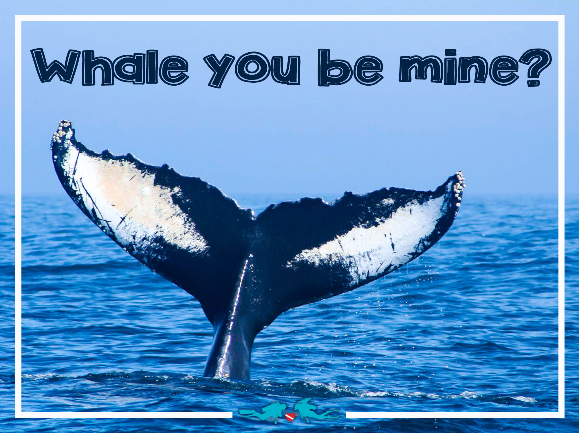Whale You Be Mine Valentine's Day Scuba Diving Quote