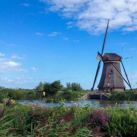 Windmill by the River